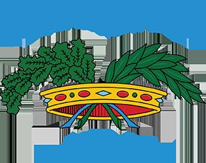 upi lazio upi lazio unione provincie d italia